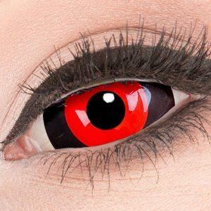 Blood Cell Sclera Lenzen