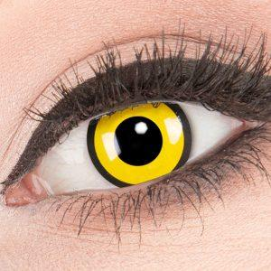 Black Yellow Lenzen