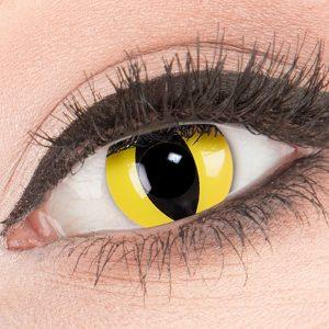 Cat Eye Lenzen