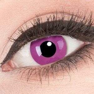 Purple Color Lenzen