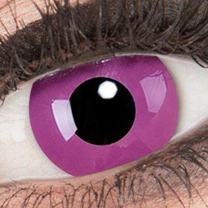 halloween-kontaktlinsen-purple-thumb