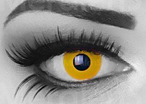 Yellow Sun lenzen