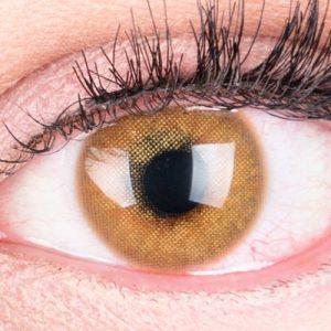 farbige-braune-kontaktlinsen-jasmin-brown-thumb