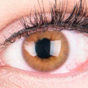 farbige-braune-kontaktlinsen-rose-brown-thumb